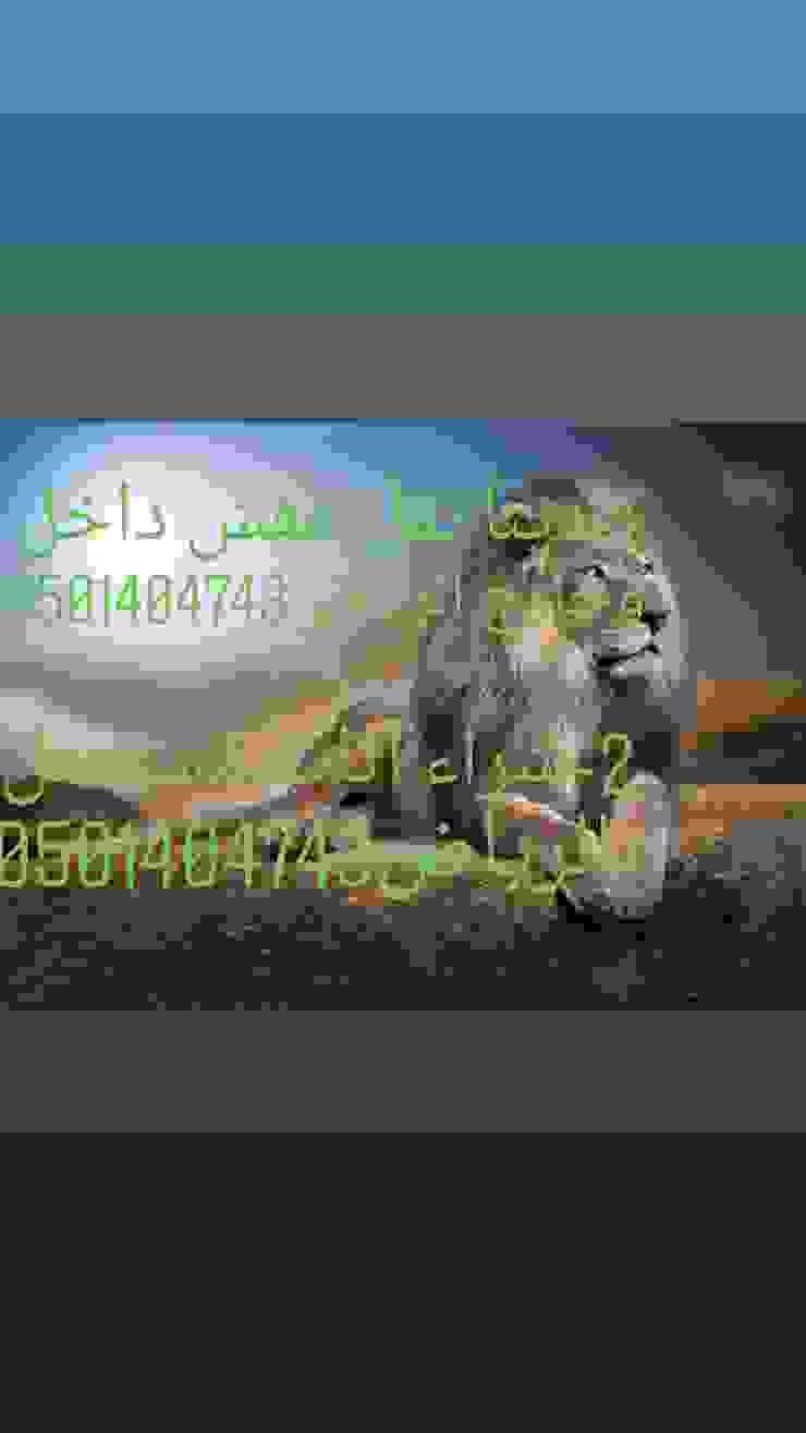 الرياض: كلاسيكي  تنفيذ دينا نقل عفش بالرياض0501404743, كلاسيكي