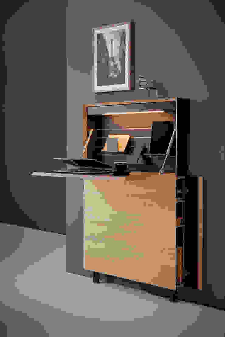 studio michael hilgers Living roomCupboards & sideboards