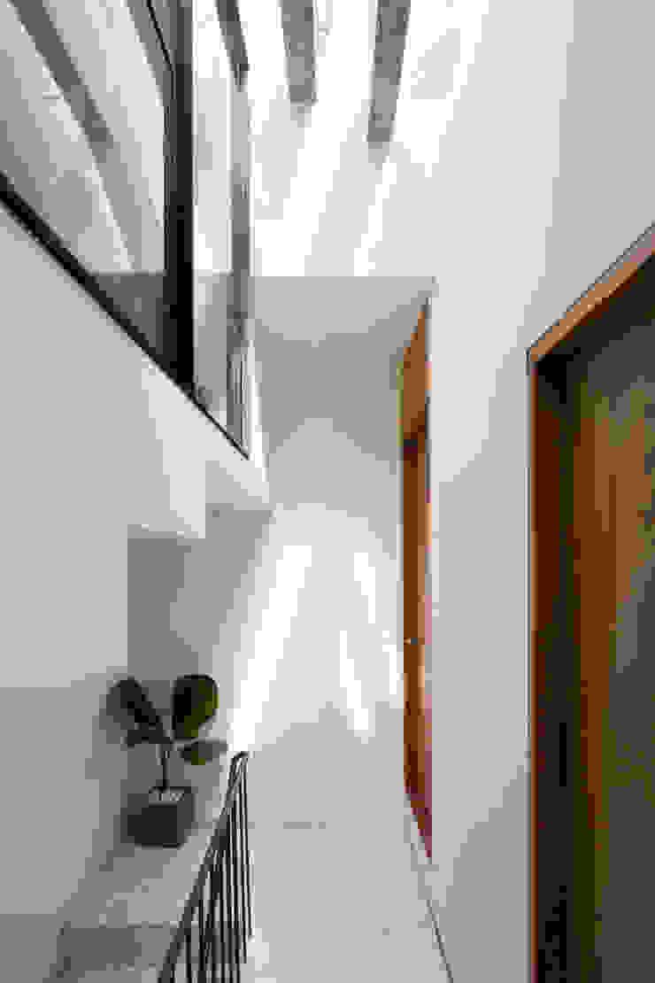 BOUNDARY house Hành lang, sảnh & cầu thang phong cách nhiệt đới bởi AD+ Nhiệt đới