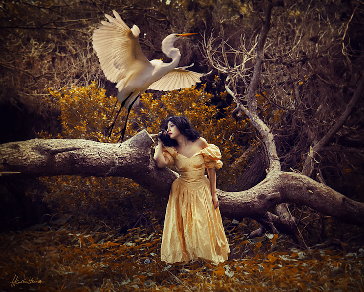 The Heron Maiden -Limited Edition Print: eclectic  by Mineheart, Eclectic