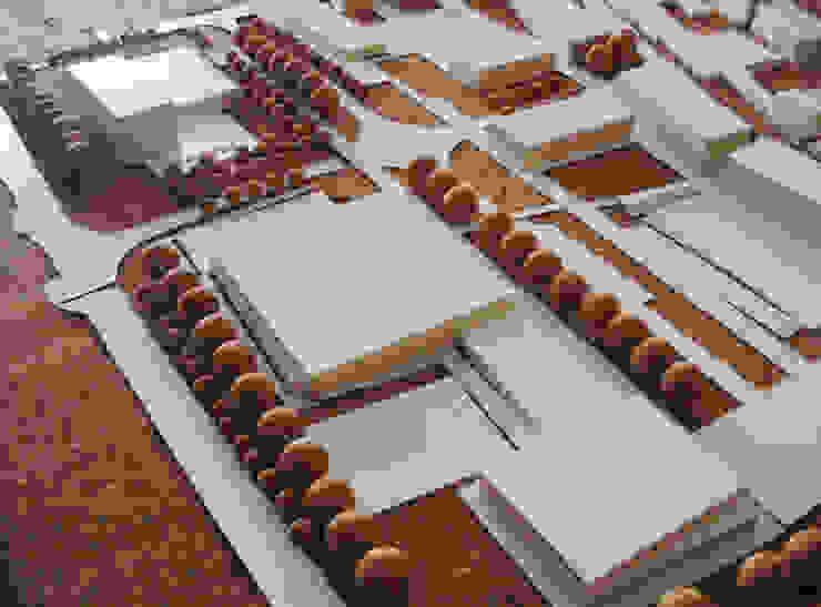 Zona Comercial Escritórios modernos por Carlos Amorim Faria, Arquitecto Moderno