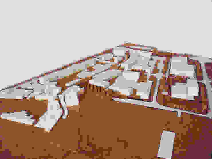 Visão Geral da Solução por Carlos Amorim Faria, Arquitecto Moderno