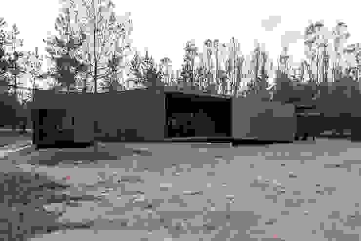 Casa Piñatas Casas de estilo minimalista de Whale! Minimalista Madera Acabado en madera