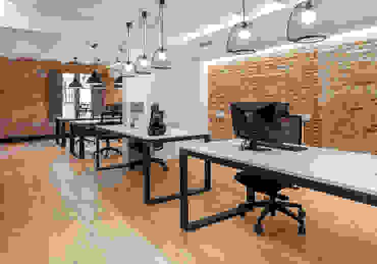 ESTUDIO DE CREACIÓN JOSEP CANO, S.L. Ruang Studi/Kantor Modern