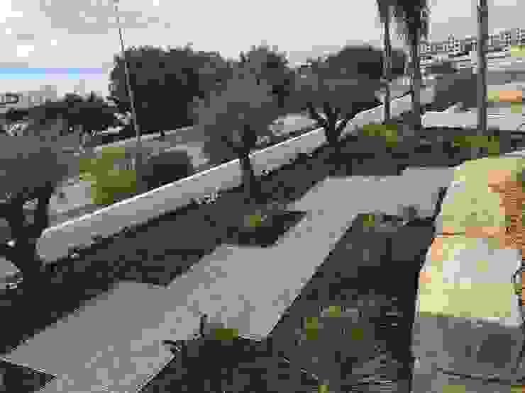 Ecossistemas Rock Garden