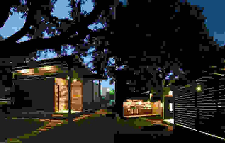 Green Living Ltd Modern houses