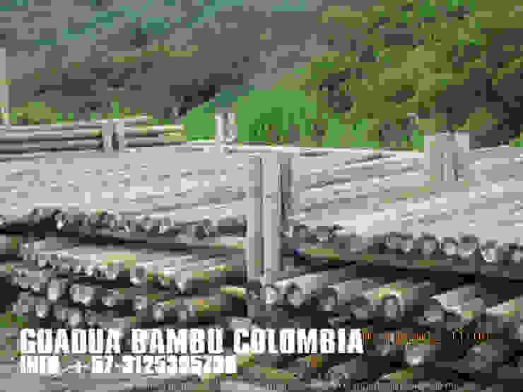 LA VEGA CUNDINAMARCA, TRANSFORMACION Y RENOVACION DE CASA de GUADUA Y BAMBU COLOMBIA