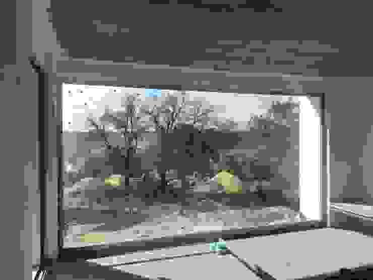 Um olhar sobre a natureza... Torlaca Salas de estar modernas