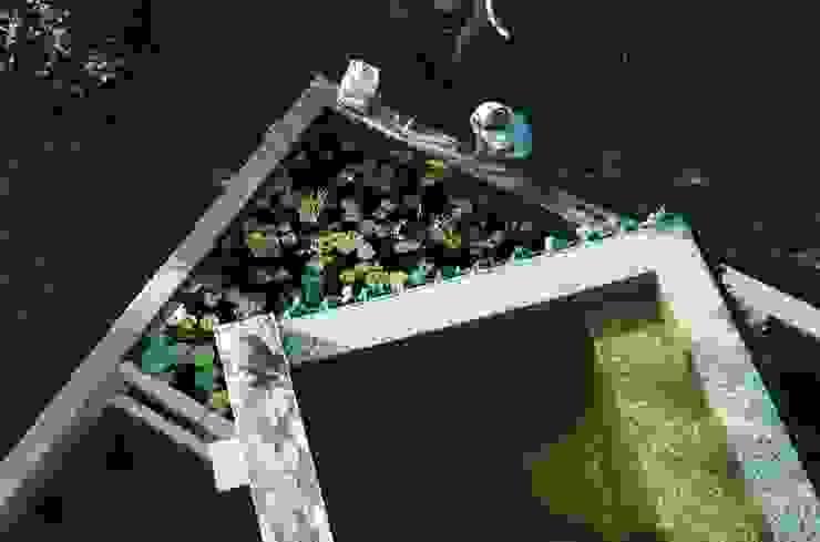 View of Koi ponds by Strey Architects Modern