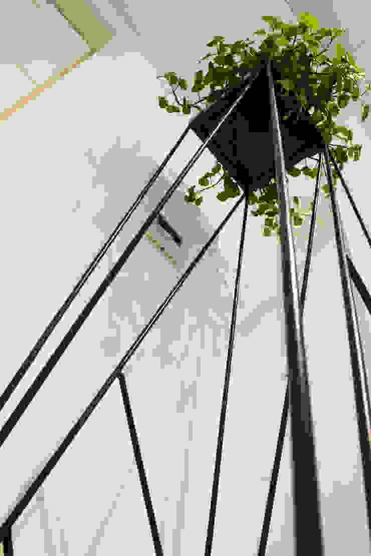 Proyecto PRC Caracas Jardines de estilo moderno de Arq Renny Molina Moderno
