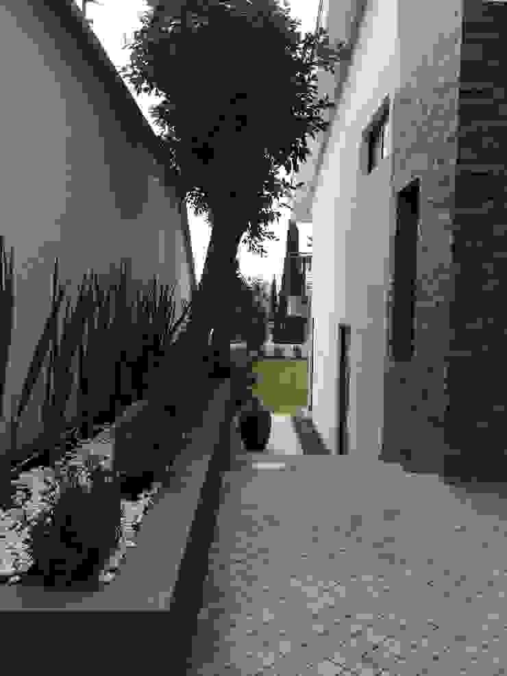 Jardines de estilo moderno de CESAR MONCADA SALAZAR (L2M ARQUITECTOS S DE RL DE CV) Moderno