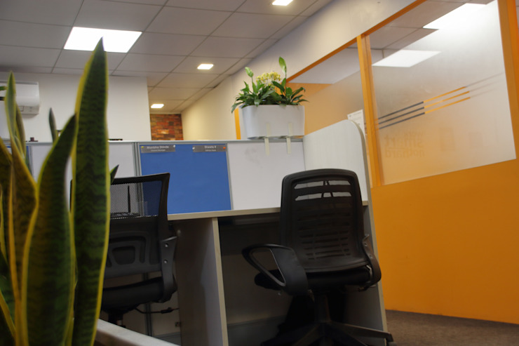 Office Plants Interioforest Plantscaping Solutions Classic style study/office
