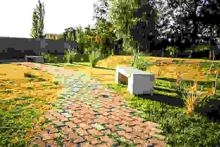 Aida tropeano& Asociados Walls Stone Green