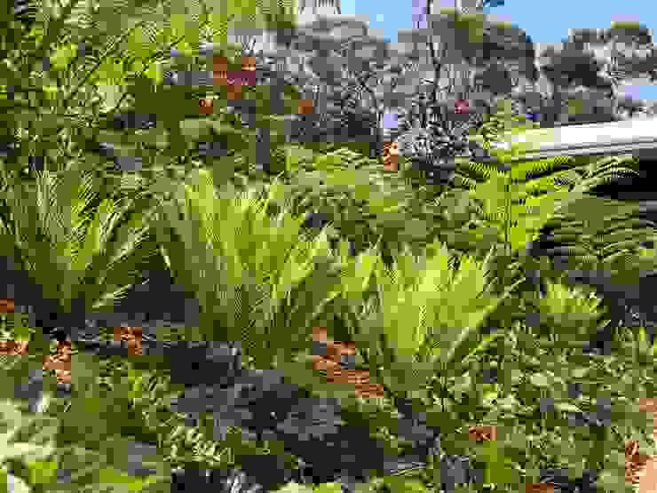 TALID PARQUEADERO. PAISAJE DE TEXTURAS. Jardines de estilo tropical de URRETA Arquitectura del Paisaje Tropical