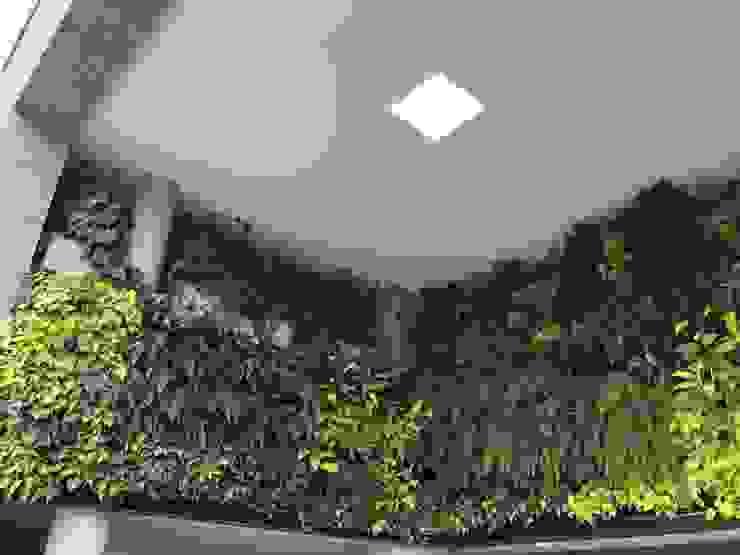 Jardín vertical ROTERDAM URRETA Arquitectura del Paisaje Jardines de estilo tropical