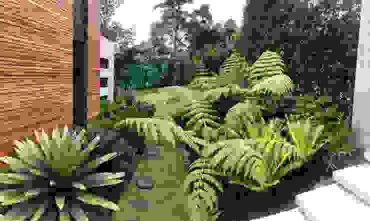 JARDÍN ACCESO PEATONAL URRETA Arquitectura del Paisaje Jardines de estilo tropical