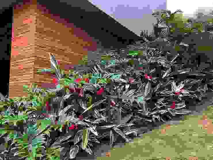 COLORES Y TEXTURAS URRETA Arquitectura del Paisaje Jardines de estilo tropical