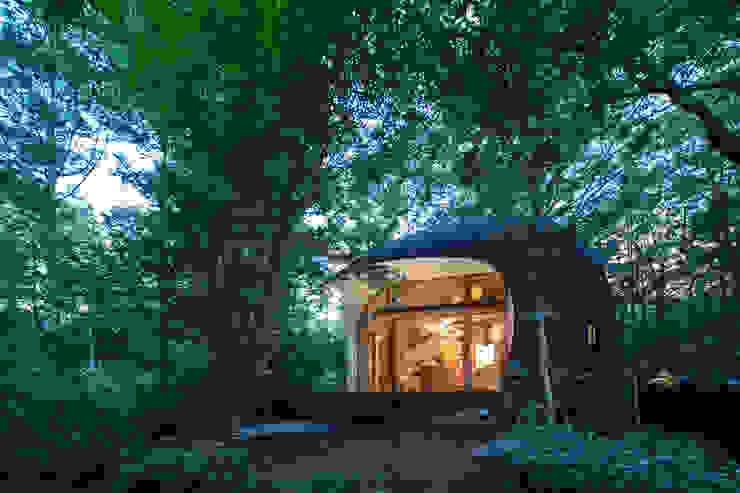 Shell House / The language of forest の 遠野未来建築事務所 / Tono Mirai architects オリジナル 木 木目調
