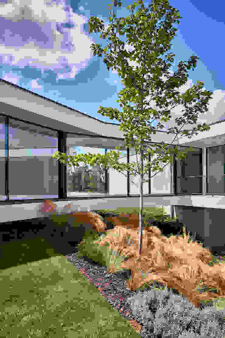 MC House Atelier d'Arquitetura Lopes da Costa Fincas Vidrio Transparente