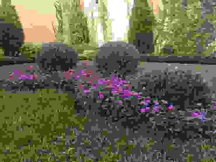 Jardín de topiarios Jardines mediterráneos de Arquitectura Viva - Alexandra Patow Mediterráneo