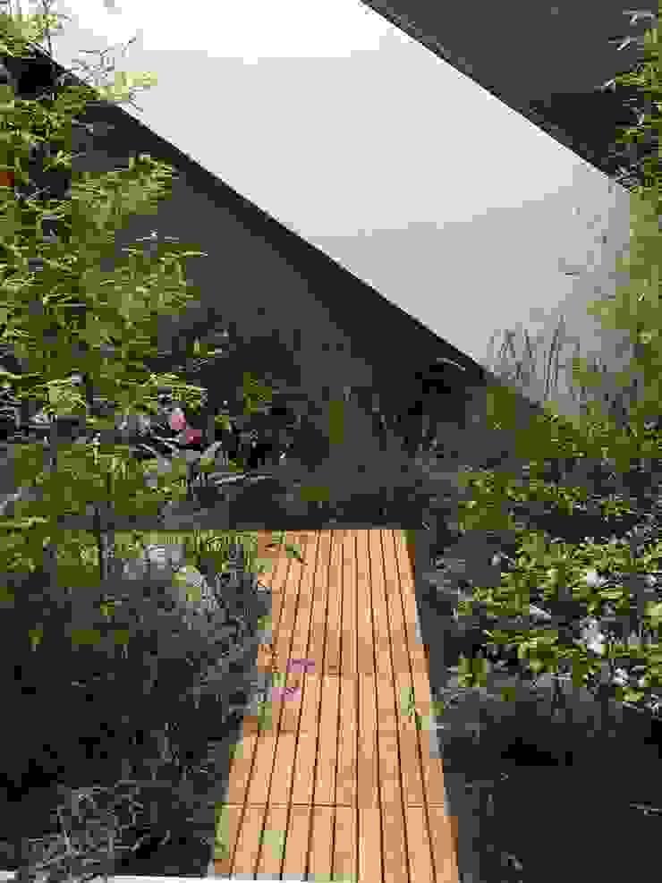 Jardin pequeño Arquitectura Viva - Alexandra Patow Jardines mediterráneos