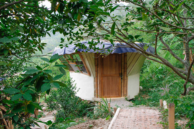 Privacidad de Hauzer Arquitectura Tropical Bambú Verde