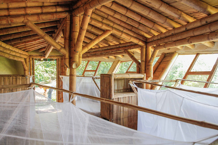 La guadua como protagonista de Hauzer Arquitectura Tropical Bambú Verde