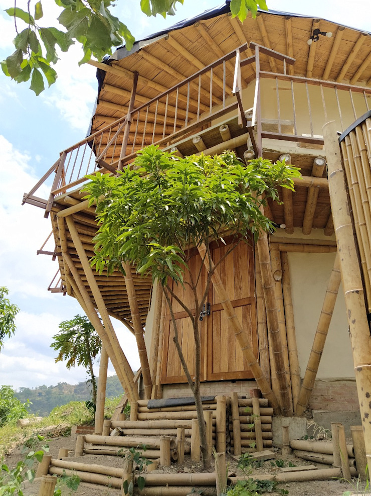 Flexibilidad de Hauzer Arquitectura Tropical Bambú Verde