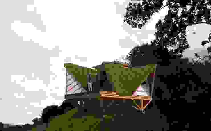 Estética de Hauzer Arquitectura Tropical Bambú Verde