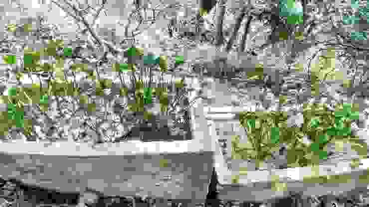 Tratamiento de aguas residuales de Hauzer Arquitectura Rural Concreto reforzado