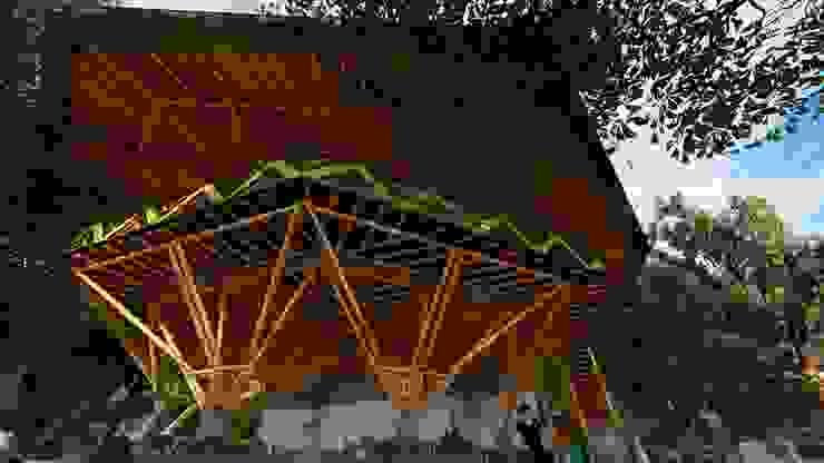 Simbología de Hauzer Arquitectura Tropical Bambú Verde