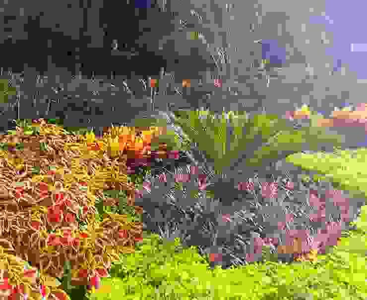 EcoEntorno Paisajismo Urbano Front yard Multicolored