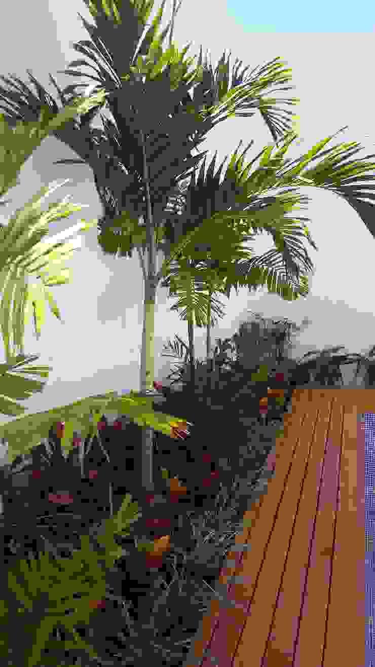 Jardinera y deck en área de piscina Jardines modernos de EcoEntorno Paisajismo Urbano Moderno