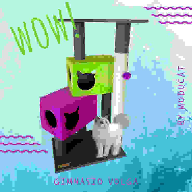 modern  by ModuCat Estructuras modulares para gatos, Modern