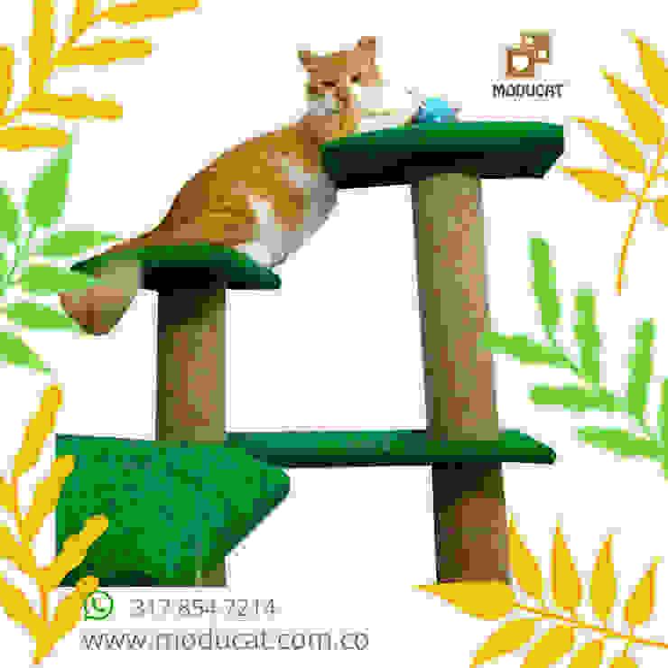 Gimnasio rascador para gatos, referencia Amazonas de ModuCat Estructuras modulares para gatos Moderno