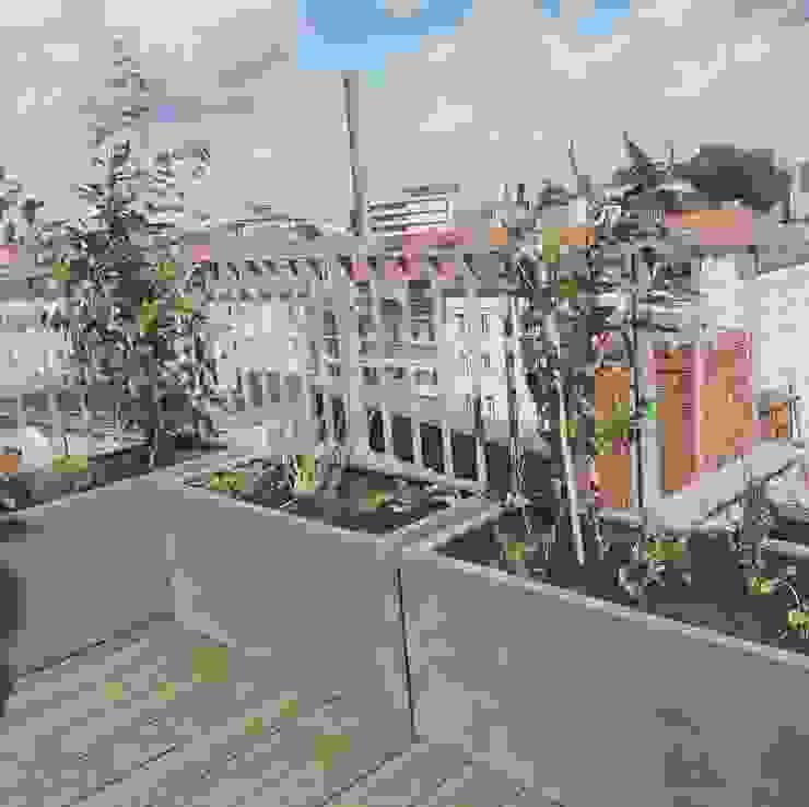 Dachterrasse mit Kunststoffgefäßen und autom. Bewässerung Pflanz im Glück Moderner Balkon, Veranda & Terrasse