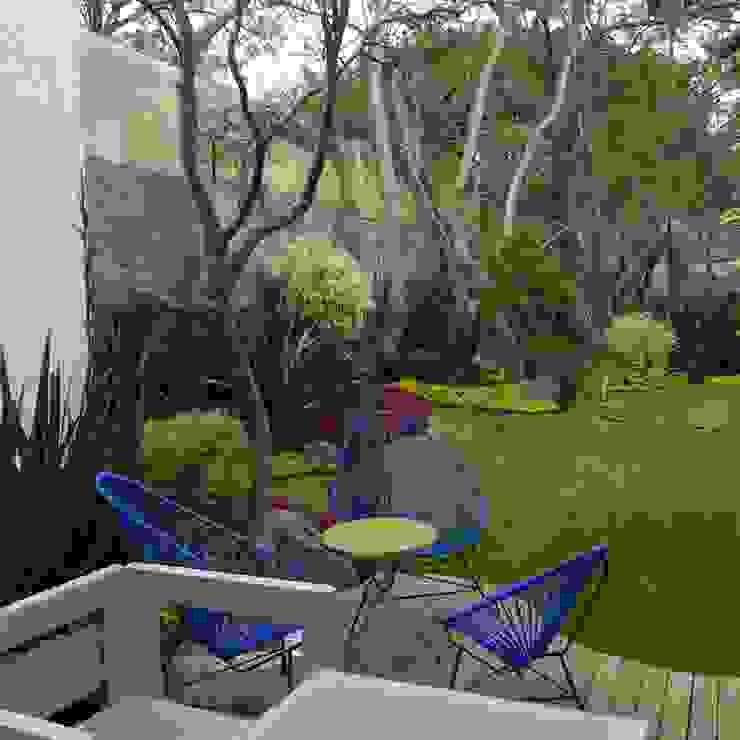 Castro Palmira PR SUSTENTABLE Jardines modernos