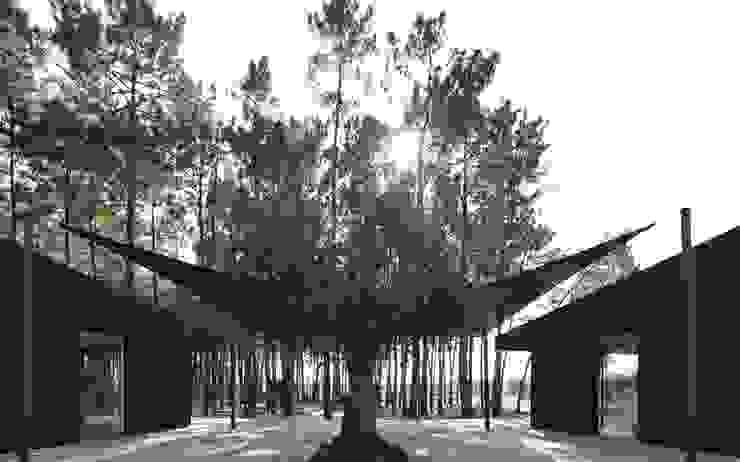 Banema S.A. Bungalows Legno composito Effetto legno