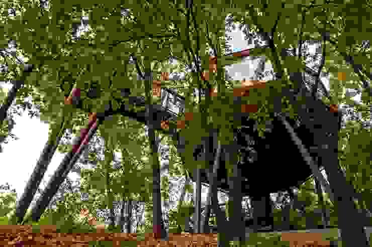 Il Progetto - Osservatorio Astronomico: Nel Parco Con le Stelle Sullalbero Hotel moderni