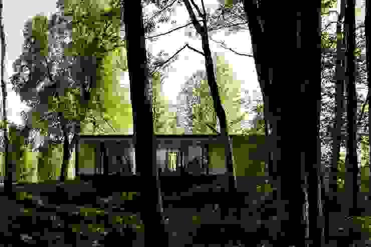 D.O.M.+ Patios & Decks Plywood Beige