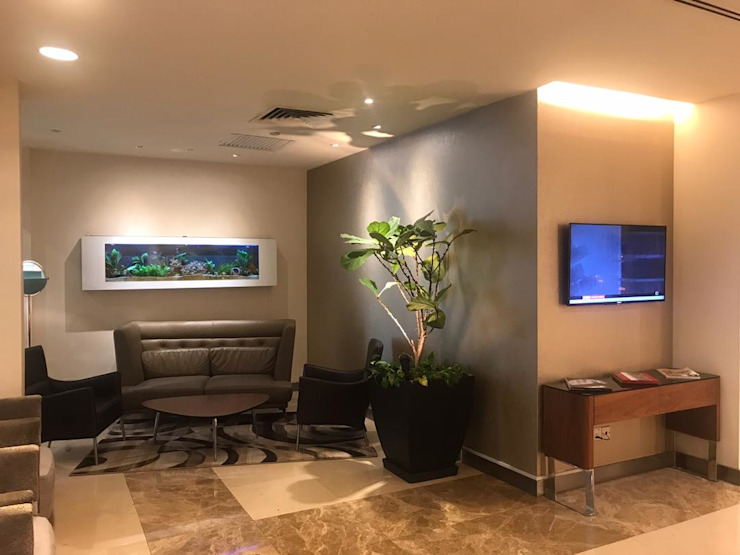 Seazone Hotel Modern