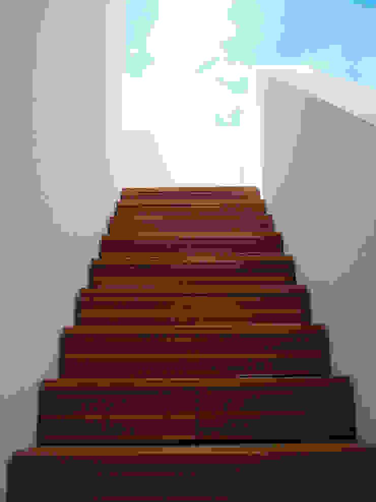 Luís Duarte Pacheco - Arquitecto Escalier