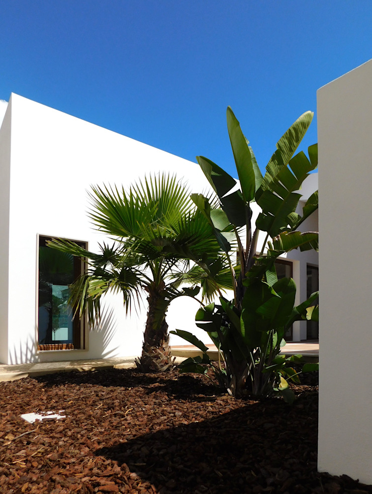 Luís Duarte Pacheco - Arquitecto Jardin méditerranéen Blanc