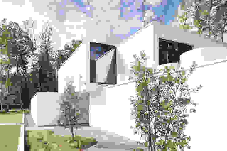 Niko Wauters architecten bvba Fincas Blanco