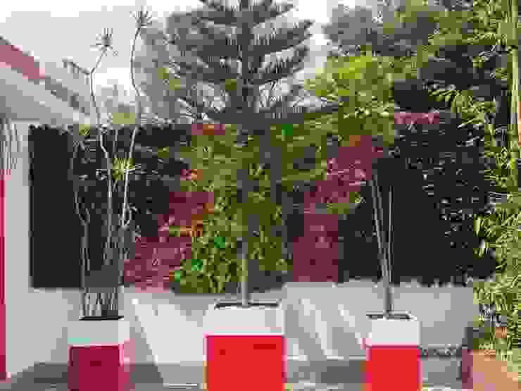 Vida Verde Atelier de Jardinería Modern garden Red