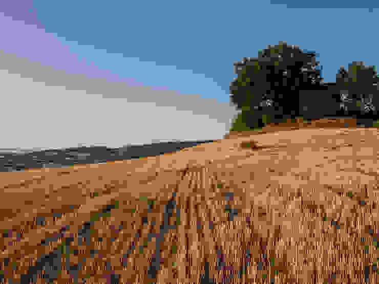 Il panorama dall'antica Pieve di San Donato PROPERTY TALES Casa rurale