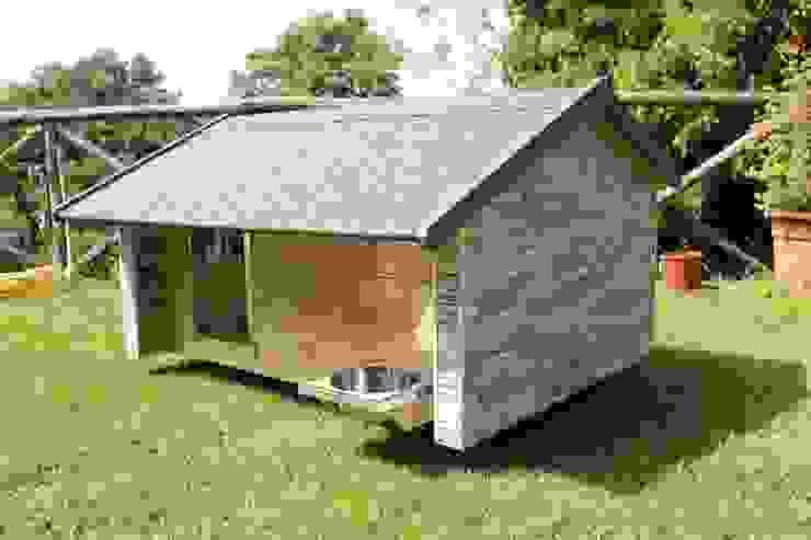 Cuccia da esterno ispirata a casa di Pet House Design® Moderno Pietra