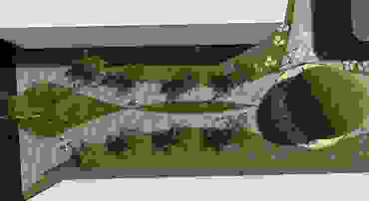 Vista de planta ROQA.7 ARQUITECTURA Y PAISAJE Jardines de estilo tropical