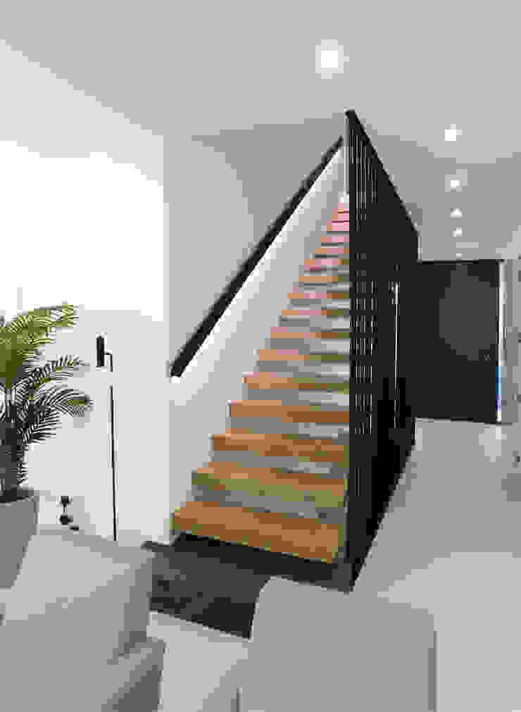 Luís Duarte Pacheco - Arquitecto Escalier Bois