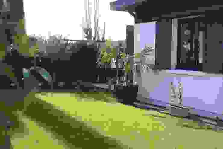 Jardin SAB & CO Jardin moderne